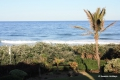 Summer Place / Shelly Beach